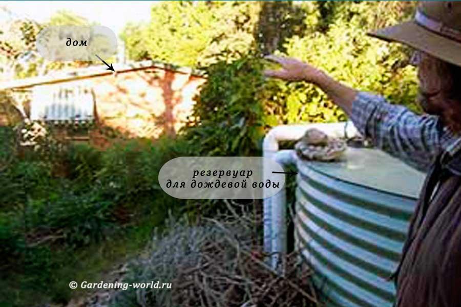Сбор дождевой воды - вариант для ленивых