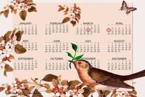 Благоприятные дни для посадки семян в 2020 году
