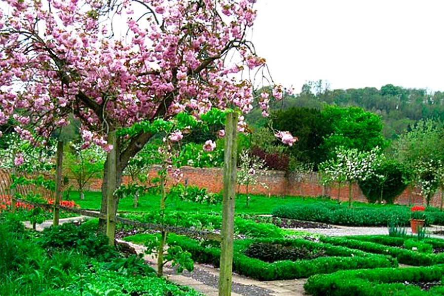 Английский стиль в садоводстве или геометрия в саду и огороде
