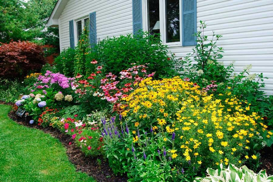 Что делать, если не все растения для цветника есть в наличии