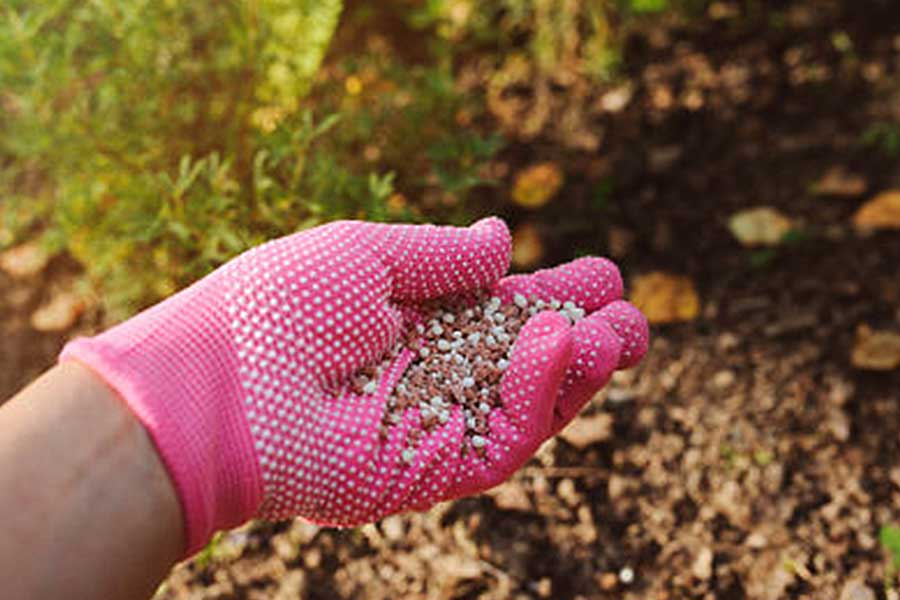 Как правильно выбрать минеральные удобрения