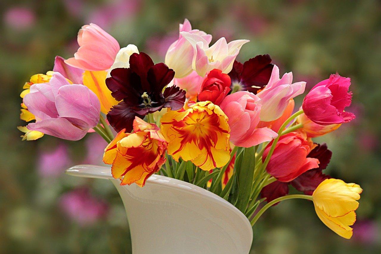 Как сохранить срезанные цветы и продлить им жизнь в вазе