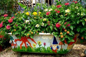 Контейнерное садоводство на даче в фотографиях