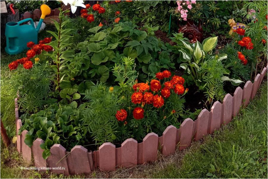 Окантовка для клумбы и цветников