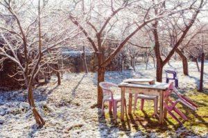 Восстановление деревьев