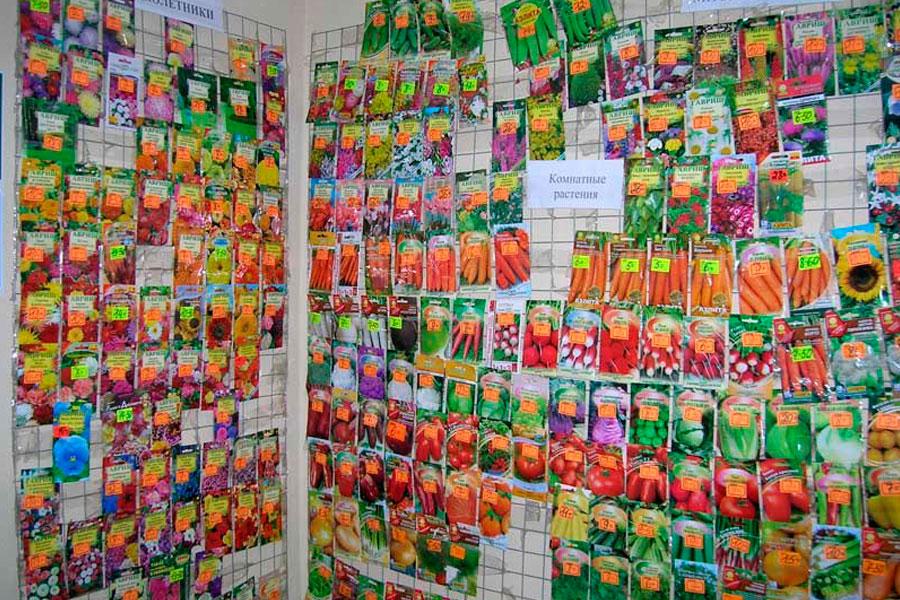 Покупка семян в магазине