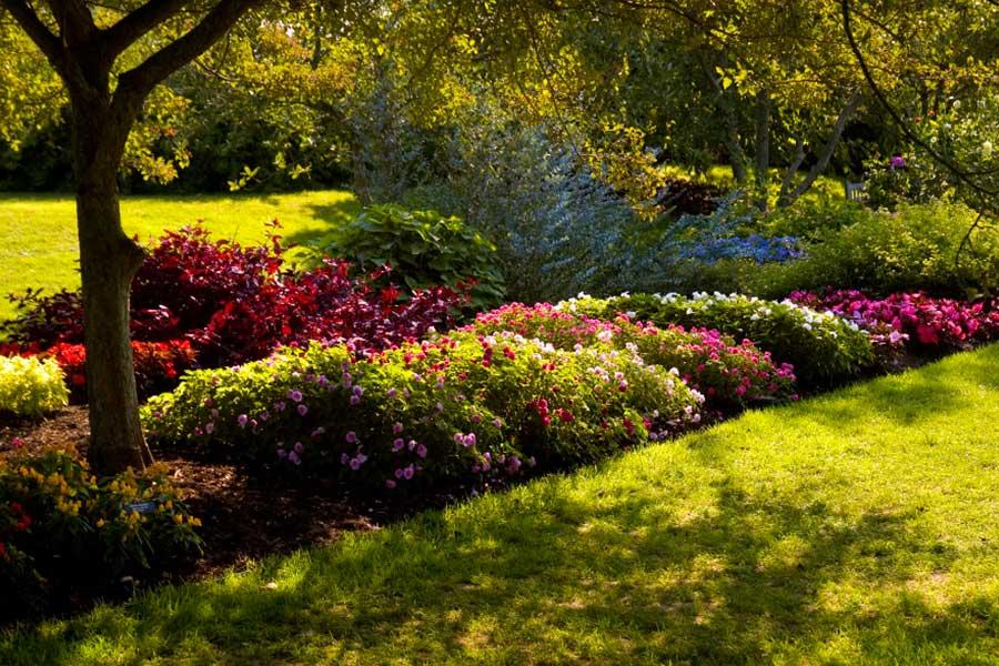 Ландшафтный дизайн участка на примере Садов Дюпона