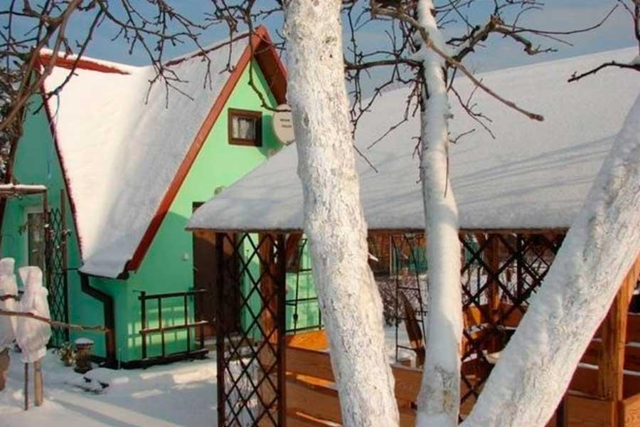 Обрезка деревьев зимой, ее плюсы и правила проведения