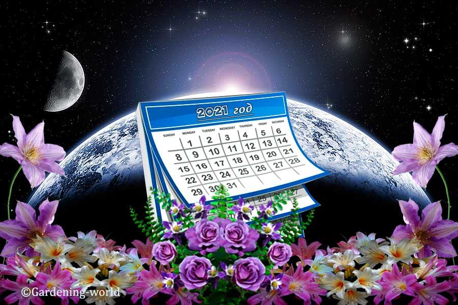 Лунный календарь на 2021 год для садовода и огородника